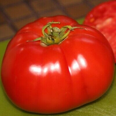 Vegetable Seeds Tomato Delicious Ukrainian Heirloom NON GMO