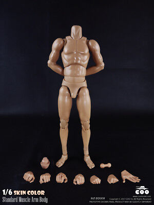 COOMODEL BD008 COO Standard Muscle Arm High Body(27cm) Skin color 1/6