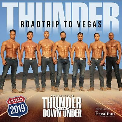 2019 Thunder From Down Under Wall Calendar, Hot Guys by SPI Entertainment