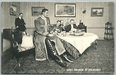 Russian Giant Machnow At Breakfast Antique Postcard