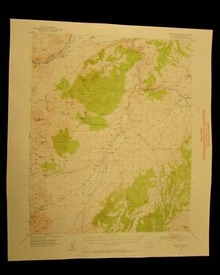 Dixie Flats Nevada 1954 vintage USGS Topographical chart map