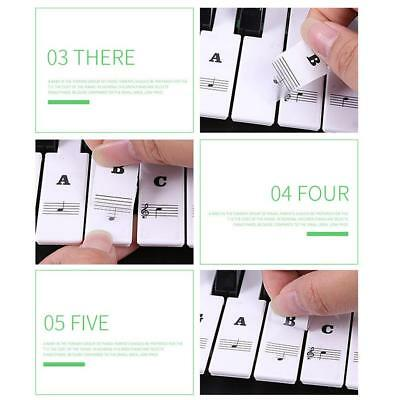 Transparent Piano Stickers Music Keyboard Key Note Labels 54 61 88 Keyboards UK
