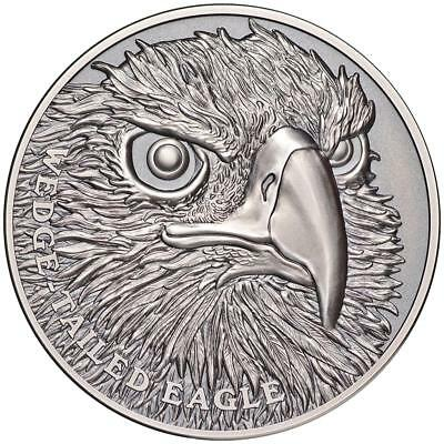 Niue 1 Dollar 2019 - Wedge Tailed Eagle - Wildlife (1.) - 1 Oz Silber AF
