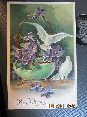 vintage postcard BEST WISHES STONEWARE BOWL of VIOLETS DOVES used