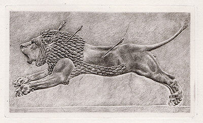 """Powerful Antique Detailed 1800s Engraving """"The Great Assyrian Lion"""" Framed COA"""