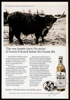 1972 Highland cattle bull photo Grant's Scotch Whisky vintage print ad