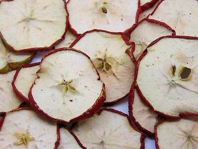 Dried RED APPLE SLICES CHRISTMAS CRAFT WREATH FLORIST DECORATION Dried Fruit UK