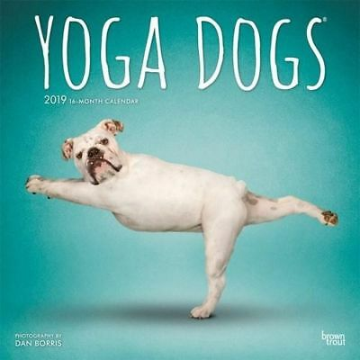 NEW Yoga Dogs 2019 Square Wall Calendar Wall Calendar Free Shipping