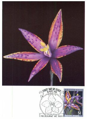 Australia Maxicard 1986 - Orchids flowers