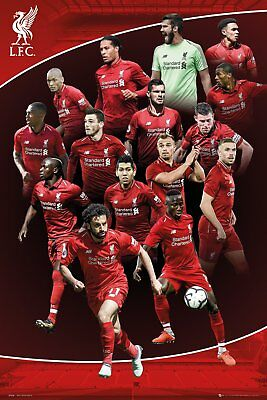 LIVERPOOL FC PLAYERS Maxi Poster Print 61x91.5cm 24x36 inches SP1536