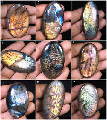 AAA Top Quality Untreated Natural Labradorite Superb Colors Fiery Cab Stones