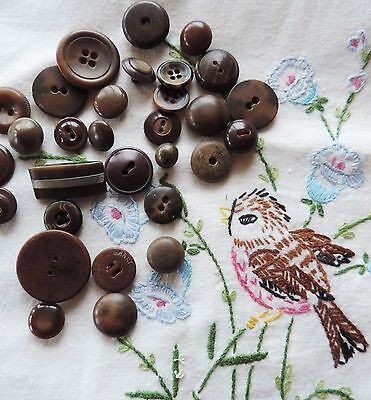 Antique Buttons Vegetable Ivory Plastic Brown Mixed Lot 30 Sewing Button