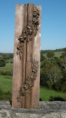 SUPERB 19thc WOOD CARVED PANEL WITH RELIEF CARVED SPRAY OF FLOWERS