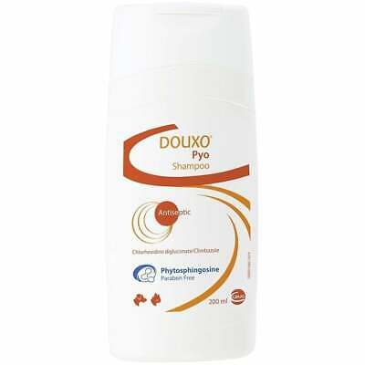 Douxo Pyo Disinfecting Shampoo 200ml, Premium Service, Fast Dispatch