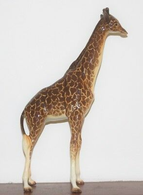 Vintage Beswick Large Adult Giraffe In excellent condition with no damage.