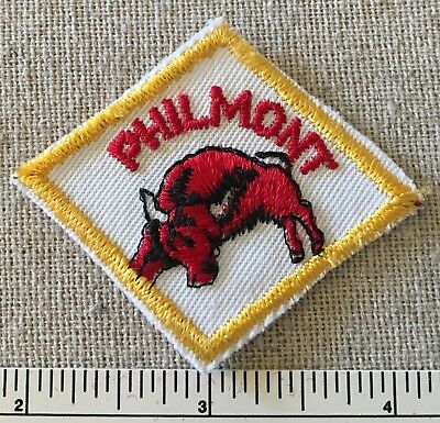 Vintage PHIMONT SCOUT RANCH Diamond Shaped HAT PATCH Red Bull Boy Scout PB NM