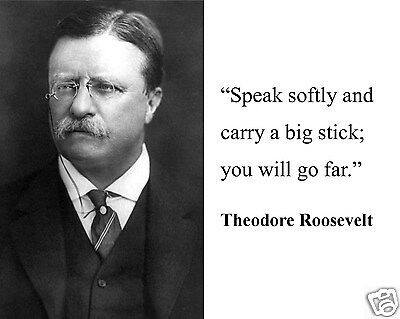 "Theodore Teddy Roosevelt ""carry a big stick"" Quote 11 x 14 Photo Photograph #mf1"