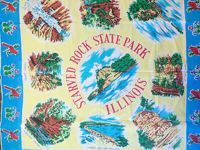 Vintage Starved Rock Illinois Souvenir Scarf Flowers Canyons Hand Rolled Japan