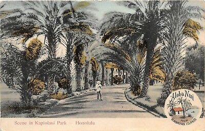 LP49Hawaii South Sea Curio Postcard  Scene Kapiolani Park Honolulu