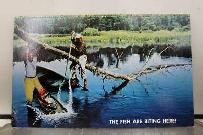 Scenic Bass Fishing Fish Are Biting Postcard Old Vintage Card View Standard Souv