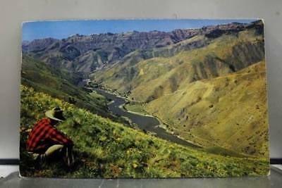 Idaho ID Oregon Snake River Hell's Canyon Postcard Old Vintage Card View Post PC
