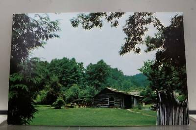 Scenic Southern Cabin Home Postcard Old Vintage Card View Standard Souvenir Post