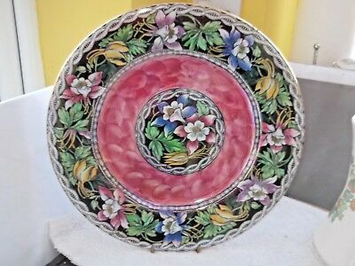 1924+  Large Plate By Maling  Floral Pattern With Pink Trim  Pattern  6456