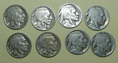 U.S.A.  8 X BUFFALO NICKELS - 1925, 1926, 1929, 1930, 1935, 1936, 1937 x 2