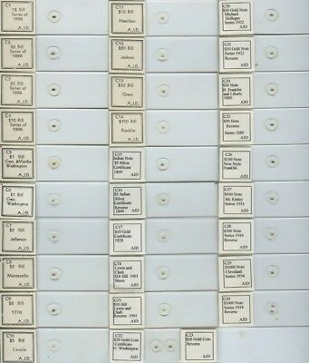 30 Currency Microphotograph Microscope Slides by A.J. DiDonato