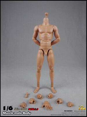 COOMODEL BD004 COO Standard Male Muscle High Body(27cm) Skin color 1/6