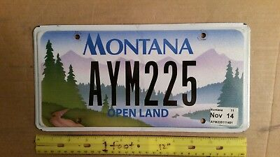 License Plate, Montana, Open Land, 2014, AYM 225