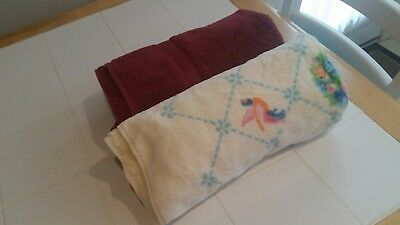 Lot of 2 Large Absorbent Bath Towels