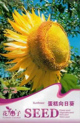 Original Package 15 Cake Sunflower Seeds Helianthus Annus A303