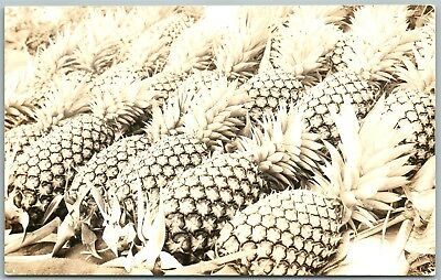 Exaggerated Pineapples Antique Real Photo Postcard Rppc