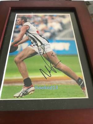 Signed Nick Maxwell Collingwood Magpies Autograph 6x4 Framed