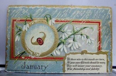 Greetings January Garnets Postcard Old Vintage Card View Standard Souvenir Post