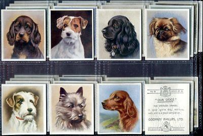 Tobacco Card Set, Godfrey Phillips, OUR DOGS, Dog Breed Head, 1939