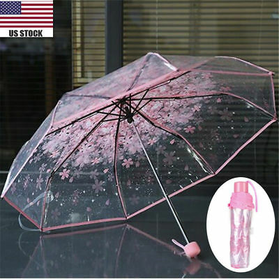 Transparent Umbrella Cherry Blossom Mushroom Apollo Sakura Pink Umbrella Hot