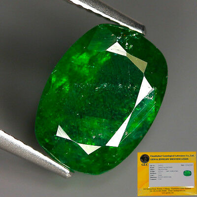 GLC-CERTIFIED 4.52 Ct Natural TSAVORITE GARNET Tanzania Cushion Gem @ See Video