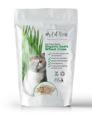 2 pouches of Cat Grass Seed - Organic Cat Grass Seed by My Cat Grass
