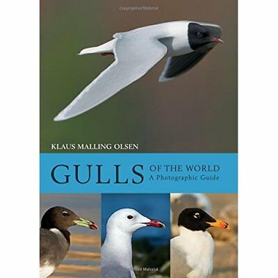 Gulls of the World: A­Photographic Guide - Hardback NEW Olsen, Klaus Ma 22/02/20