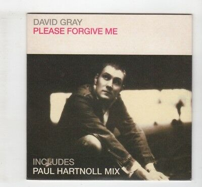 (IK766) David Gray, Please Forgive Me - 1999 CD