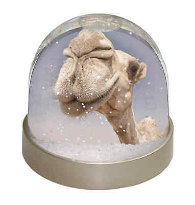 Camels Intrigued by Camera Photo Snow Globe Waterball Stocking Filler G, CAM-1GL