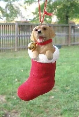 Dog in Stocking GOLDEN RETRIEVER Dog Breed Resin Christmas Ornament CLEARANCE