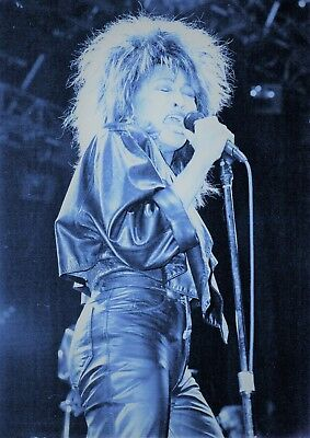 Tina Turner Photo 1985 Unique Unreleased Huge 12 Inches Artic Tinted Exclusive