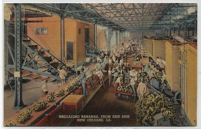 UNLOADING BANANAS FROM SHIP SIDE~NEW ORLEANS,LA~LINEN Postcard