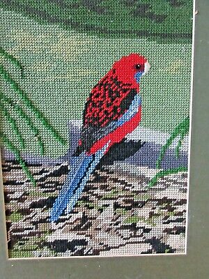 Tapestry Completed  &  Framed Crimson Rosella Bird Picture