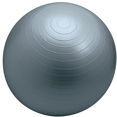 More Mile Exercise Fitness Gym Yoga Swiss Ball Anti Burst Ball 75cm with Pump