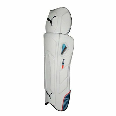 Puma Mens 2018 Evo 1 Cricket Wicket Keeping Pads Sports Training Accessory