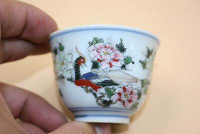 Chinese Porcelain Hand Painted Flower Peacock with Blue White Small Cup - Marks